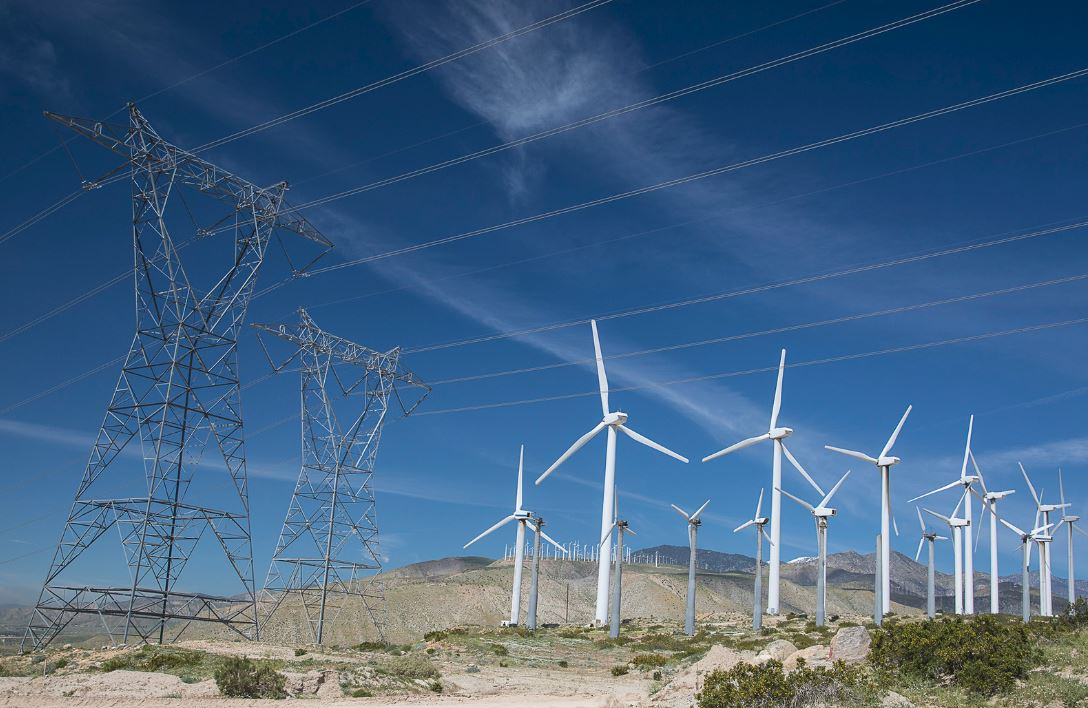 Governor Newsom Appoints Energy Advisor